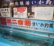駅二市場 活いか釣り広場(えきにいちば かついかつりひろば)